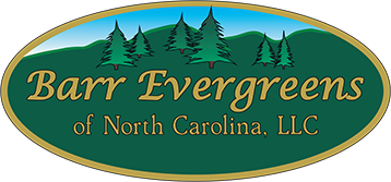 Barr Evergreens of NC, LLC Logo