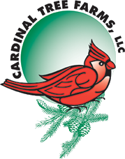 Cardinal Tree Farm Logo