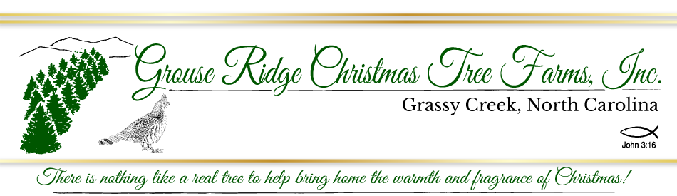 Grouse Ridge Tree Farm Logo